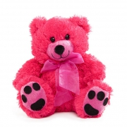 Hot Pink Teddy Bear 18cm
