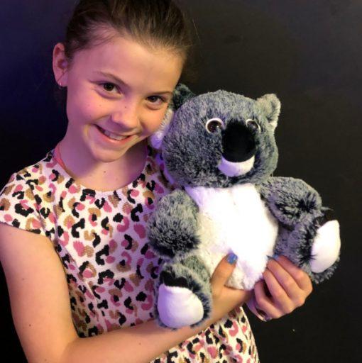 Koala bear fluffy toy