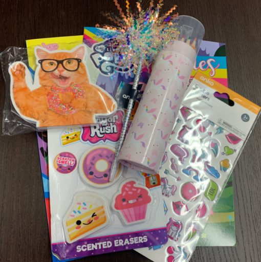 girls activity kit